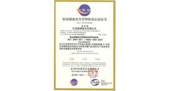 职业健康安全管理体系认证证书 9000-2